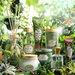 サボン 2021春夏新作《ブリスフル・グリーン リミテッドコレクション》抹茶の香りを全身で堪能♡