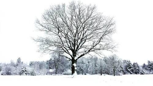 小藤萌ブログ冬