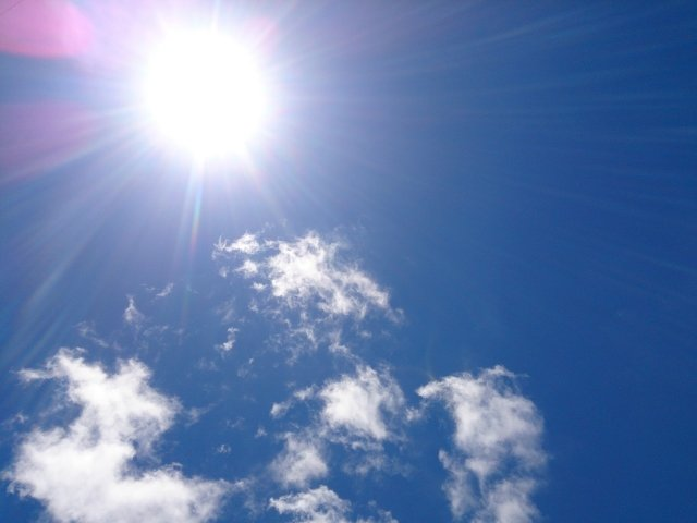 日差しフリー写真