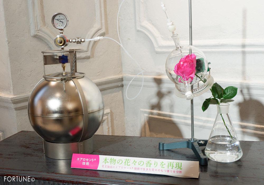 【花王】リセッシュ 除菌EX フレグランス