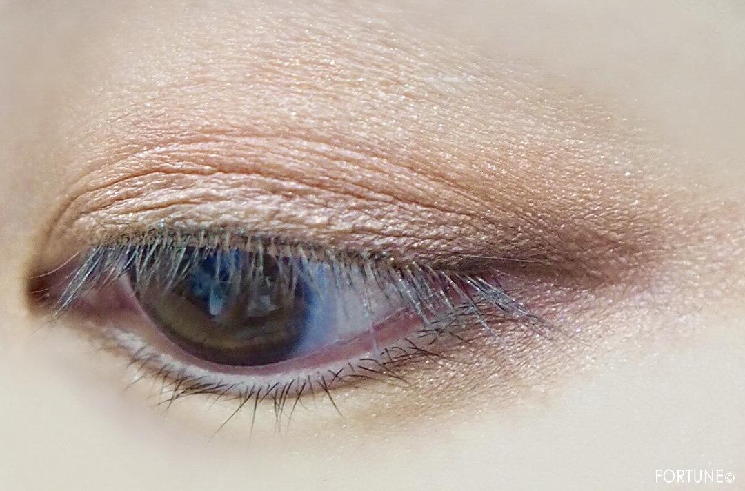 画像:ロレアル パリ2019秋新作「アイシャドウ メガパレット 01 チェリーマイシェリー」使用感