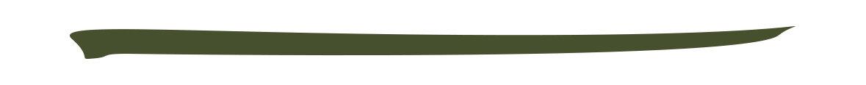アディクション ザ カラー リキッド アイライナー「005 Pine Green」