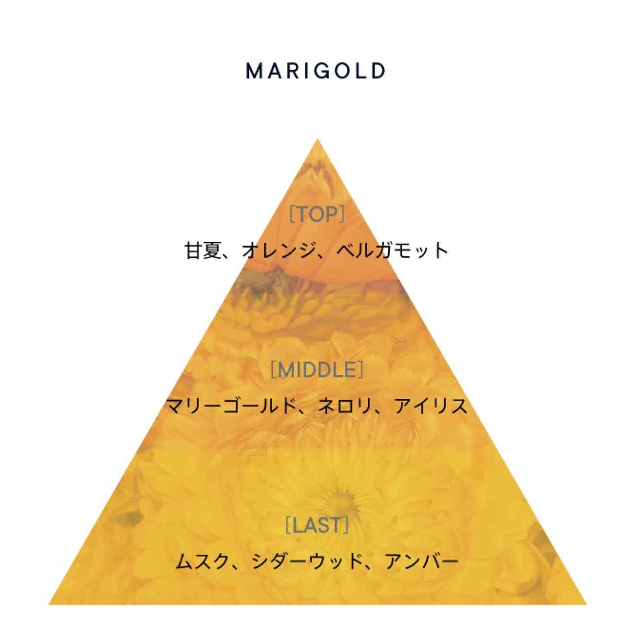SHIRO/シロ『マリーゴールド』
