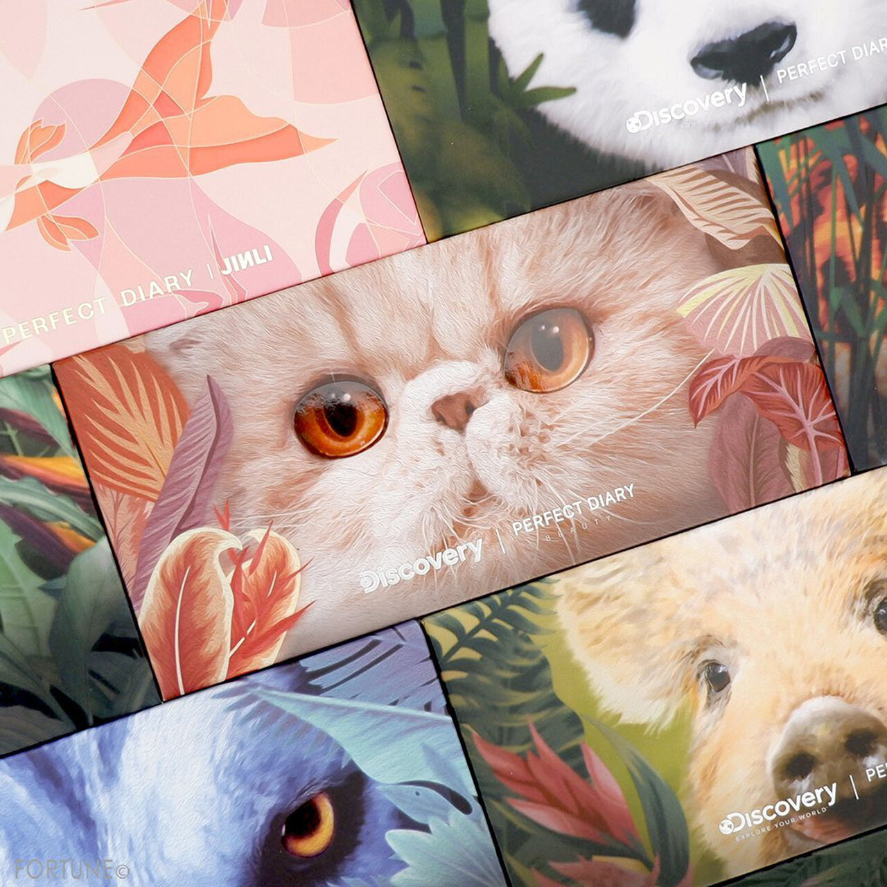 Perfect Diary(パーフェクトダイアリー)『エクスプローラ12色アイシャドウパレット』09 The Cat