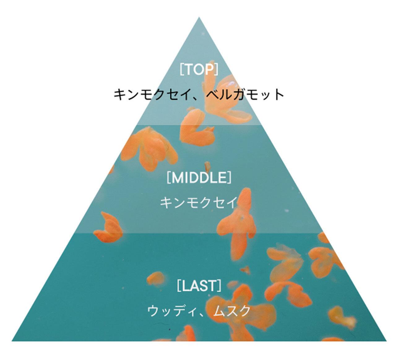 フレグランスチャート SHIRO(シロ)キンモクセイ