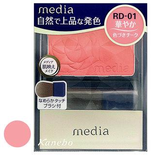 ブライトアップチ-クN RD-01 (258441)