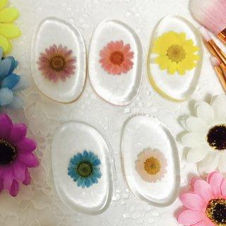 andante shop押し花シリコンパフ☆3枚セット (507437)