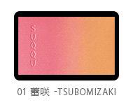 ピュア カラー ブラッシュ01|SUQQU (535665)