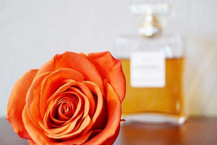 冬にローズフレグランスの香りを長持ちさせるには?つけ方やおすすめ商品を紹介