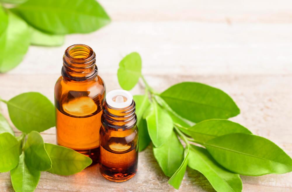 自律神経のバランスを整えるプチグレン。特徴や効能、おすすめの香水を紹介