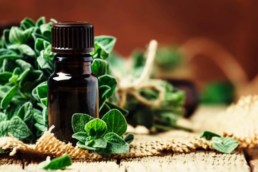 マジョラムの特徴や効果とは|相性の良い香りやおすすめアイテムを紹介
