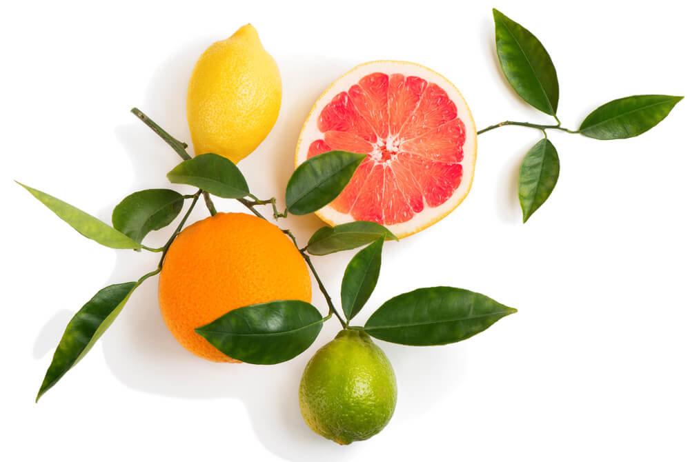柑橘系の果物と白い背景