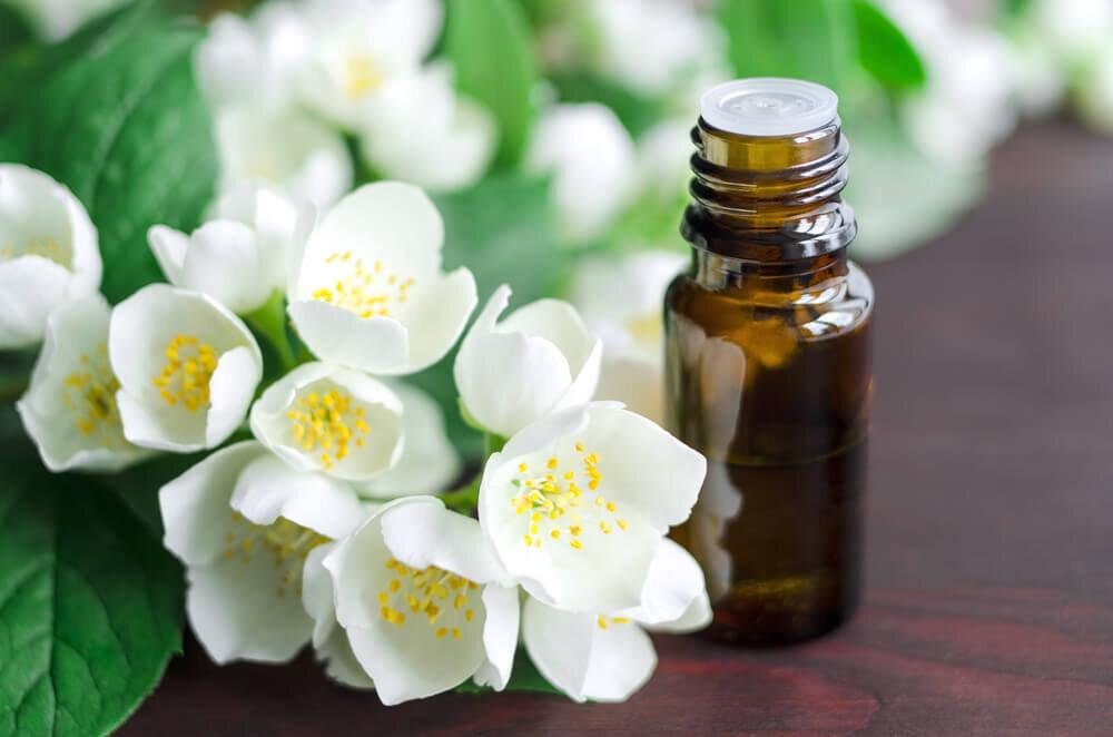 ジャスミンの花と精油