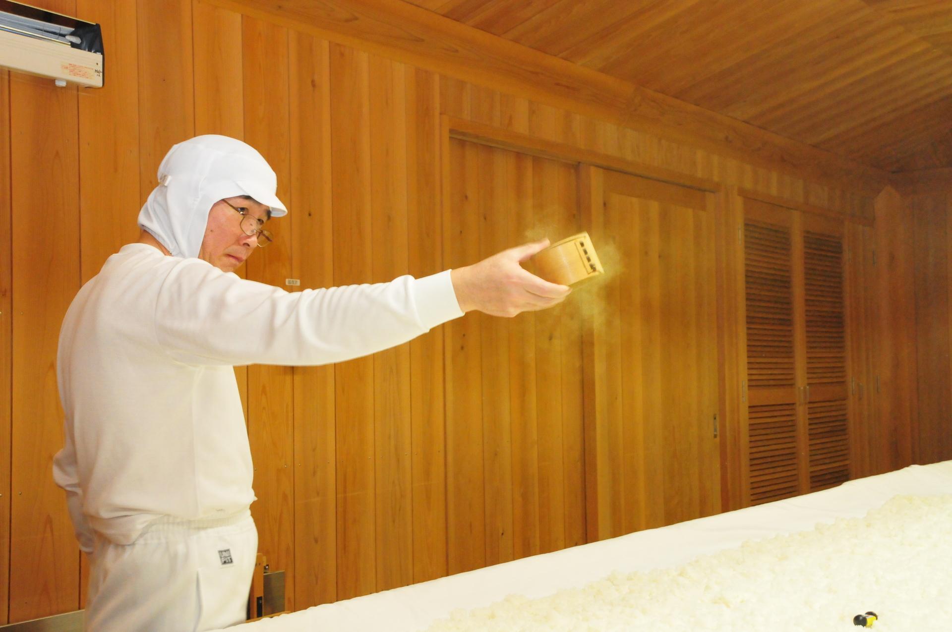 日本酒における麴菌の役割とは?種類によって変化する味わいと香りを知ろう
