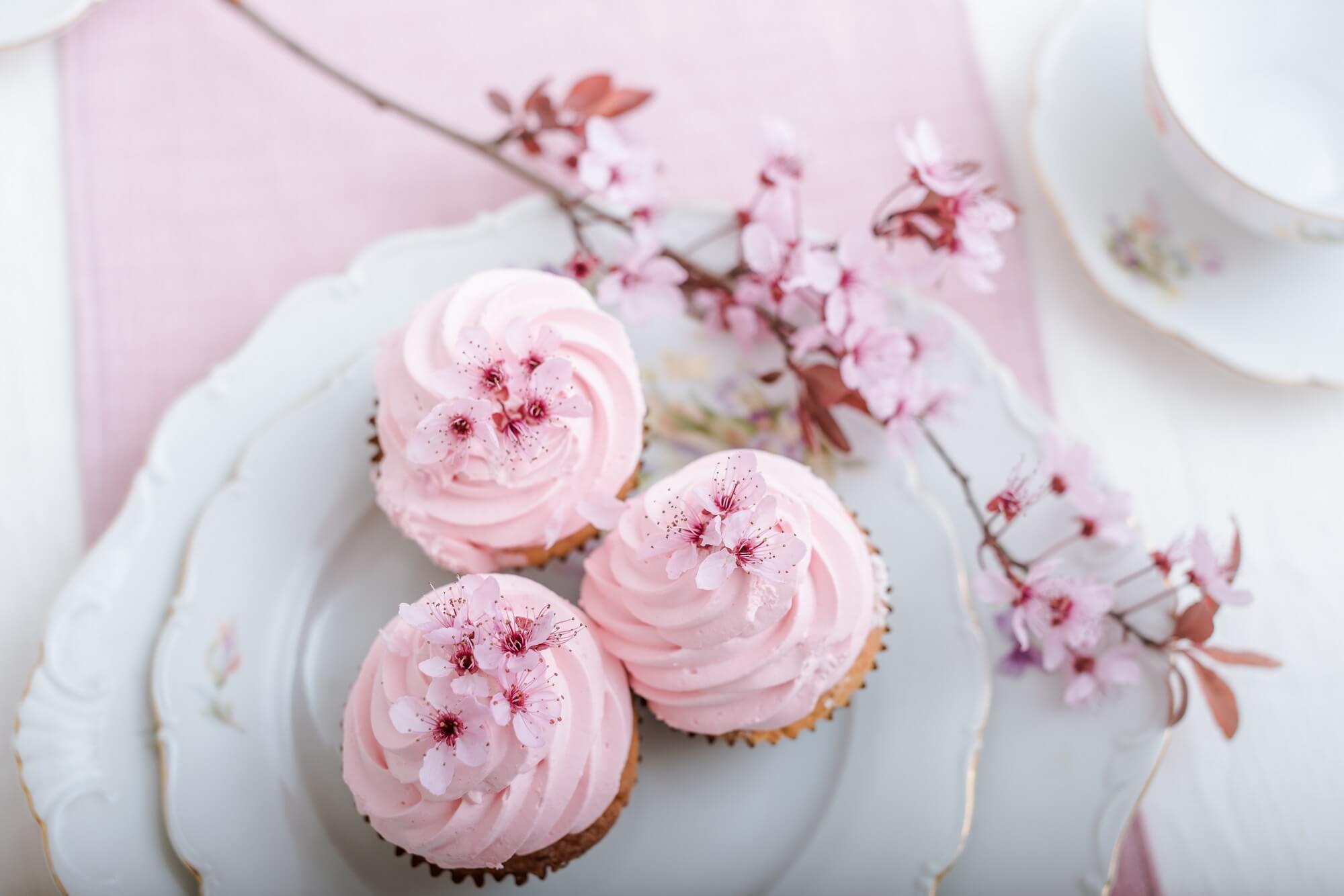 春を感じるさくらスイーツでお花見気分に。日本酒×桜のアレンジも紹介