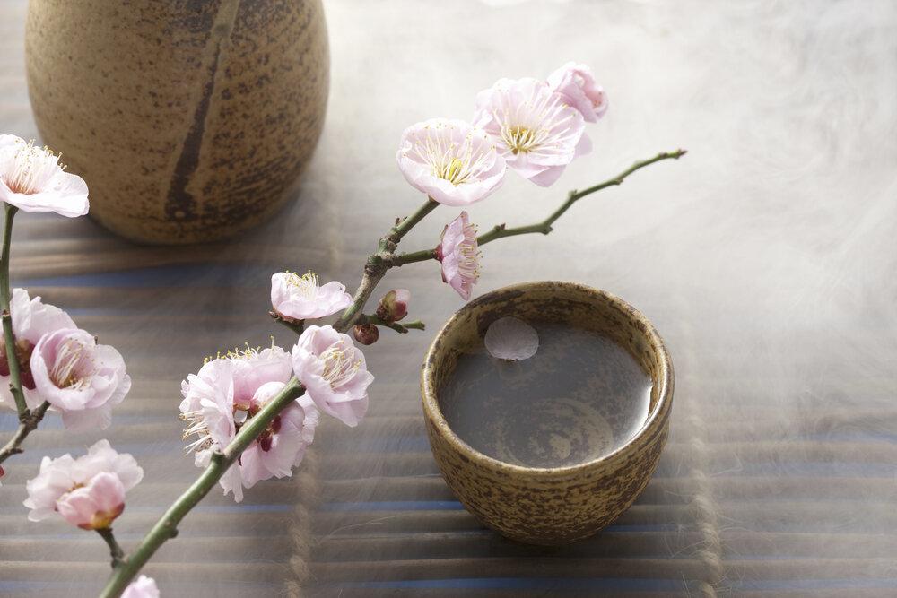桃の花とお猪口
