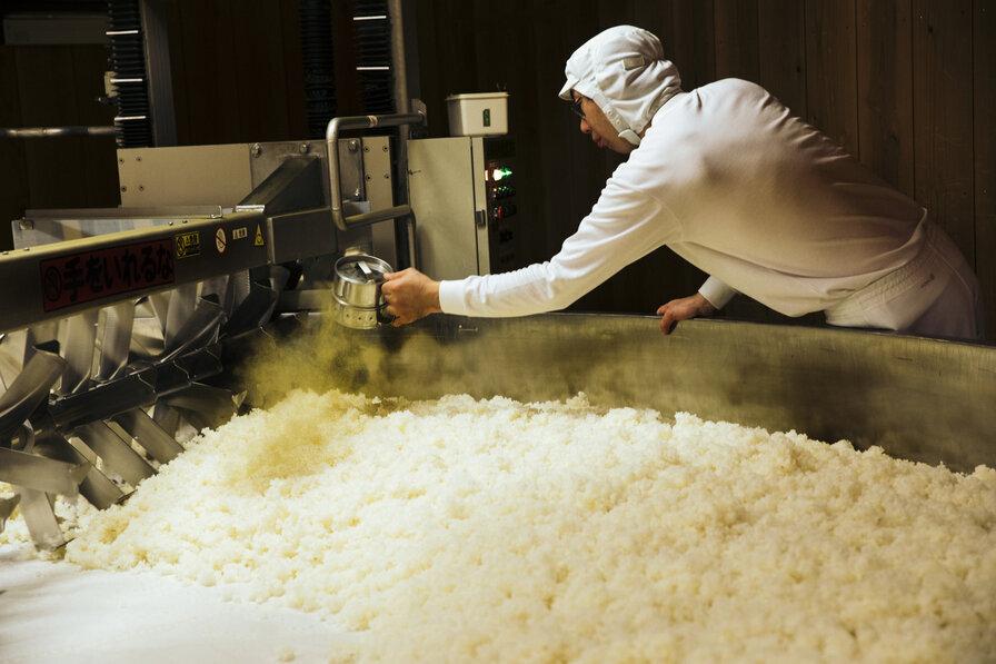 麹造りをする蔵人