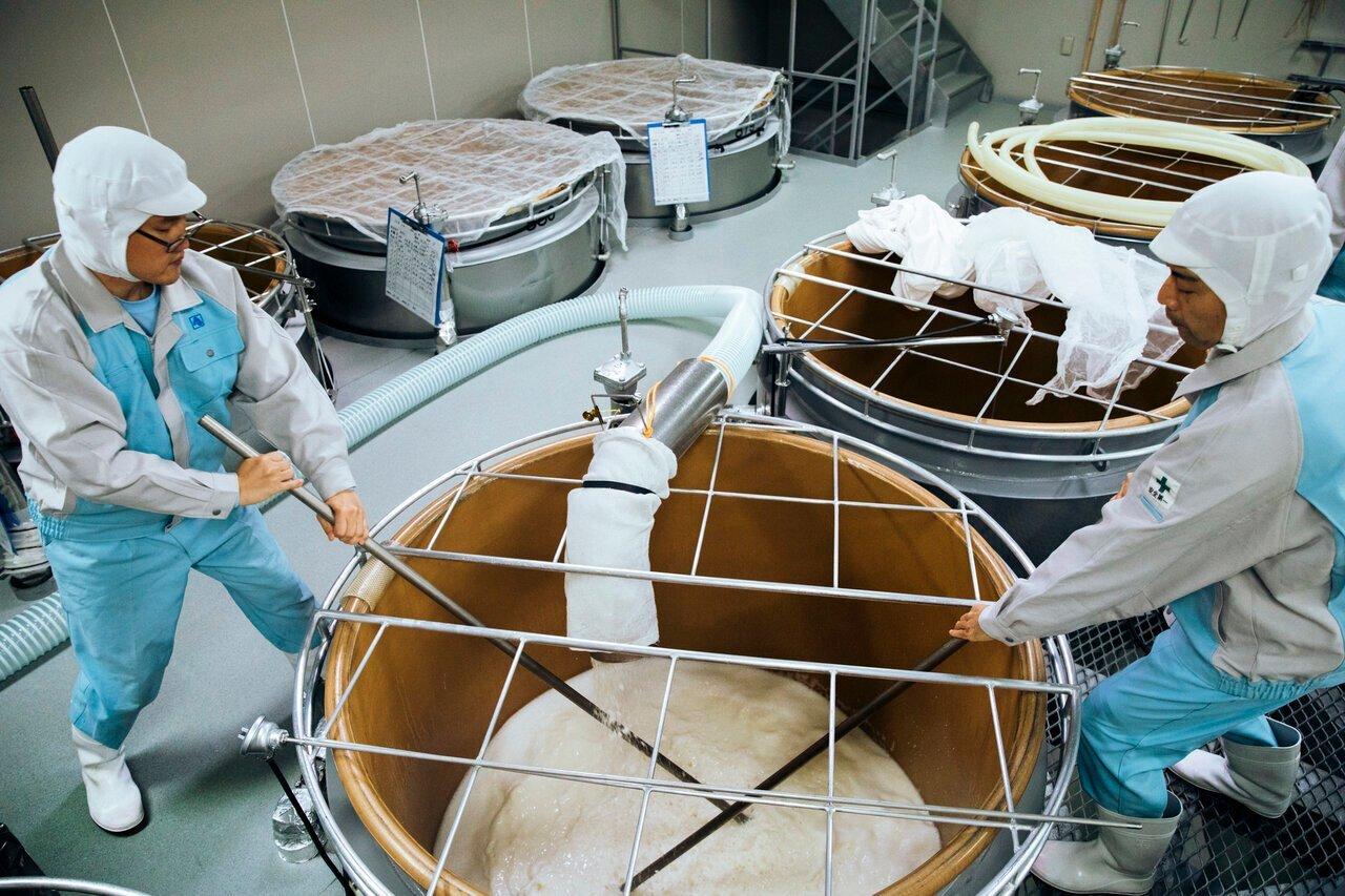 日本酒の造り方を解説!開放発酵でも負けない、酛(酒母)ともろみの「仕込み」 - KUBOTAYA