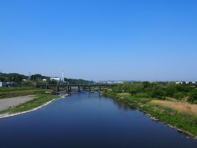 多摩川上流の自然