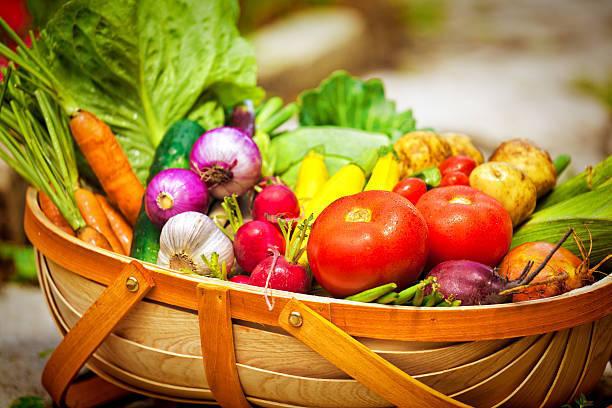 【あさイチ】永作博美さんのゴハンもりもり食生活をヒントに「夏野菜でゴハンのお供」短時間シンプルレシピをピックアップ