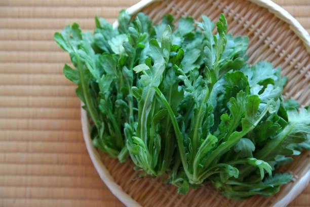 【あさイチ】みんな!ゴハンだよ 旬の「春菊」最強レシピで秋を楽しもう
