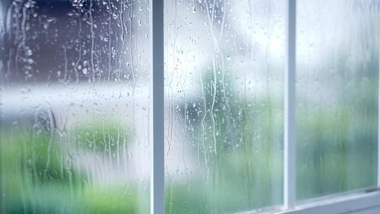 梅雨から初夏にオススメ!ヨガのポーズ&呼吸法