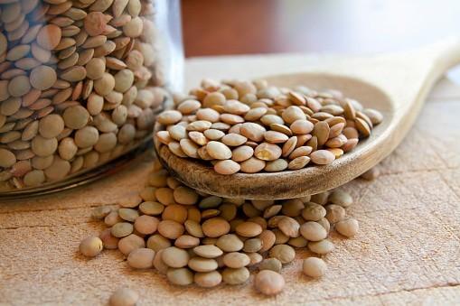 レンズマメ legumes 豆