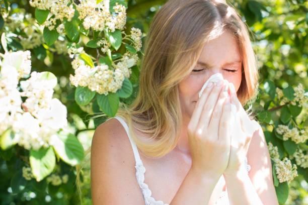 花粉症に効果のある食べ物まとめ!!