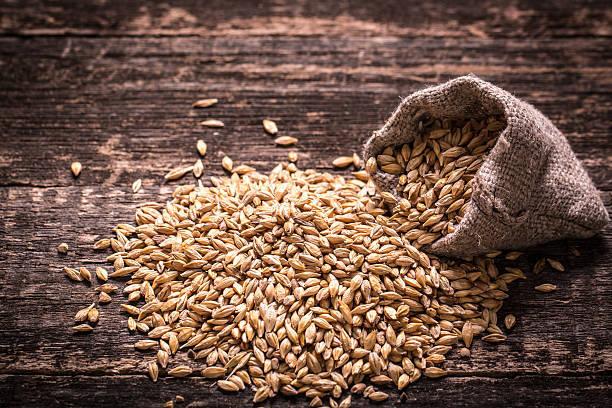 麦茶の原料である大麦にはミネラルが豊富に含まれています。