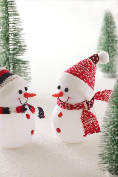 クリスマスは終わったけれど・・冬はもう少し続きます