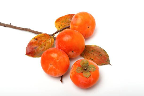 ことわざに見る「柿」の効用