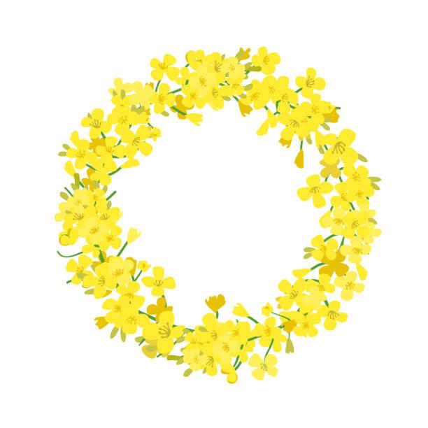 菜の花のリース