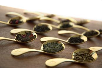 【 LUPICIA 】 Tea School : 【いれ方講座】紅茶(ホットティーの基本) (10005)