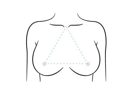 デコルテの理想形である黄金比正三角形