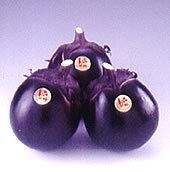 大型で丸型のなすです。肉質が緻密で、ビタミンCを豊富に...