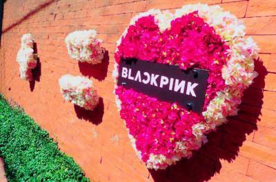 BLACKPINK、日本デビューを大規模に幕開け!原宿・渋谷エリアがBLACKPINK一色に!