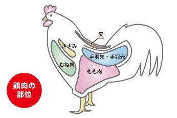 鶏肉の5部位・内蔵3部位別特徴と料理方法 - 肉のヒガシハラ (58901)