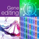 簡単だけど難しい??CRISPR/Casによるゲノム編集成功への近道
