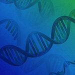 「プラスミドDNA精製キットいろいろあるけど、どれを使ったらいいの?」の声にお答えします!