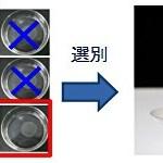 がん診断、角膜再生医療に情報処理・利用技術を活用
