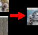 pythonによるtensorflow〜deepdreamによる画像変換〜