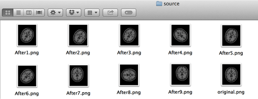 図6. sourceフォルダ(位置合わせ前の画像群)の...