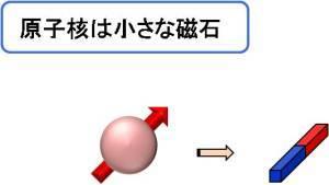 原子核 = 磁石