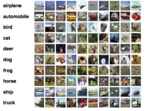 10個の分類画像