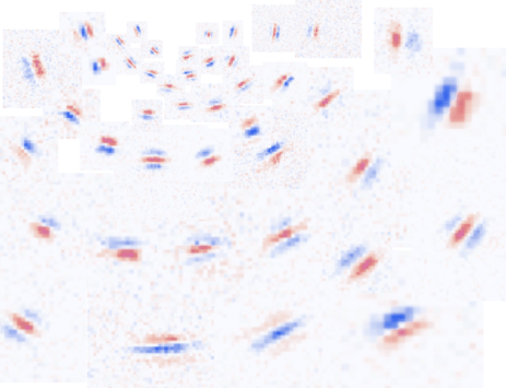 図1. 網膜上に敷き詰められる、様々な種類の単純型細胞...