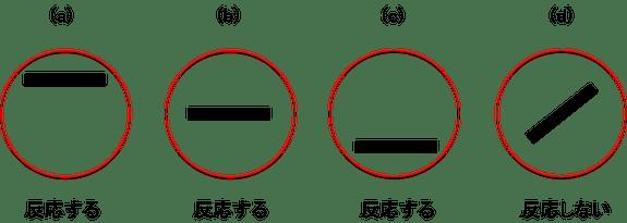 図3. 複雑型細胞の入力(線分)に対する反応(赤丸は受容野)