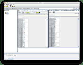 hdf5形式のファイル