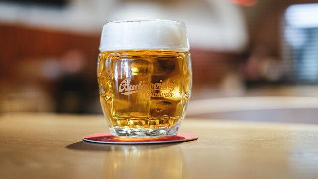 手を付ける前のビール(チェコ共和国・ブドヴァル)の写真素材
