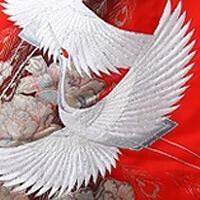 着物の伝統柄(柄の意味・種類)。着物の柄の中から代表的なものをご紹介。結婚式着物レンタル専門【THE KIMONO SHOP−ザ・キモノショップ】 (10691)