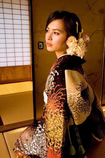 No.540 LISA乱菊花(No: 3223) / ブライダルコア伊谷   My振袖 (16944)